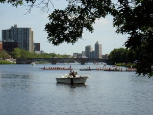Dragon Boat race on the Charles River
